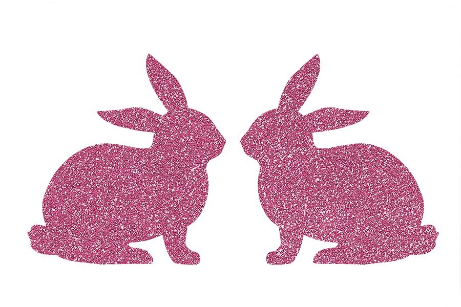 Picture of Twin Bunnies Glitter Tattoo Stencil - HP-88 (5pc pack)